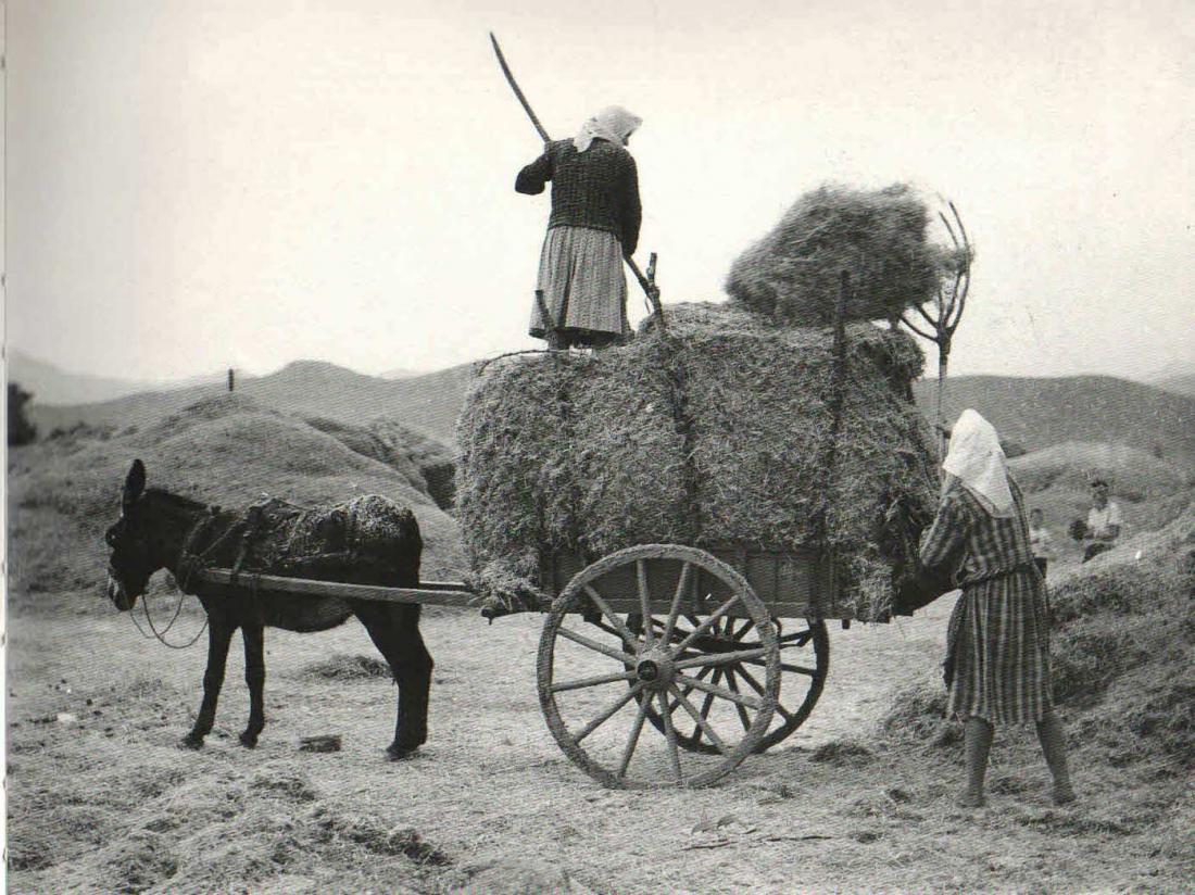Σαν σήμερα19 Νοεμβρίου 1960 δίνεται για πρώτη φορά σύνταξη στους αγρότες