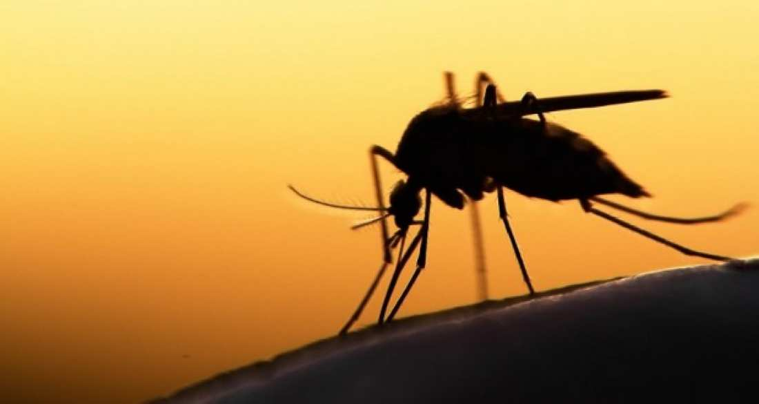 ΙΣΑ σε υπουργείο Υγείας: Ποιά έκτακτα μέτρα πήρατε για την ελονοσία;