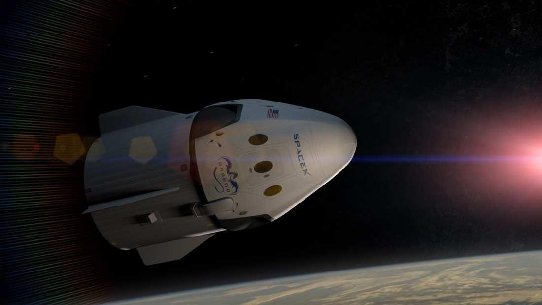 """Γεμάτη """"καλούδια"""" επέστρεψε από το διάστημα η κάψουλα Space X"""