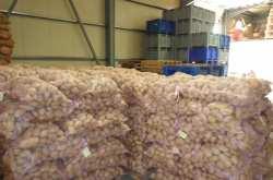 Εμπορεύονταν επί χρόνια εισαγόμενες πατάτες που τις πωλούσαν για ελληνικές, αποκομίζοντας τεράστια κέρδη