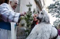Το ήξερες ότι υπάρχει και η ευλογία των σκύλων;