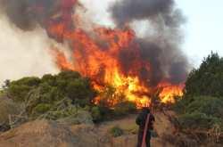 Σε ύφεση οι φωτιές σε Ηλεία και Ζάκυνθο