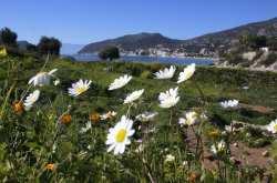 Ο καιρός την 25η Μαρτίου: Ήλιος και ζέστη