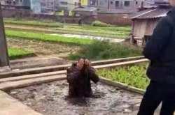 Σε ένα χωριό της Κίνας οι επίδοξοι κλέφτες σίγουρα θα το ξανασκεφτούν προτού προχωρήσουν στην αξιόποινη πράξη