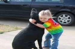 Πέθανε ο σκύλος του και έστειλε γράμμα στον Θεό… εκείνος της απάντησε!