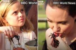 Η Αντζελίνα Τζολί και τα παιδιά της τρώνε αράχνες και σκορπιούς!