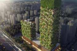 'Ενα...κάθετο δάσος στην Κίνα