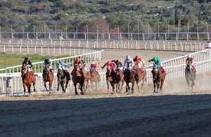 71ο Ελληνικό Ντέρμπι ΟΠΑΠ: «Κλείδωσαν» τα άλογα που θα πάρουν μέρος